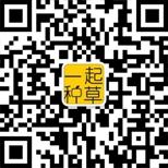 微信号:qq9519990